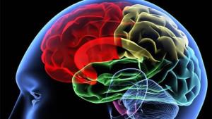 Очаговые изменения белого вещества головного мозга что это такое?
